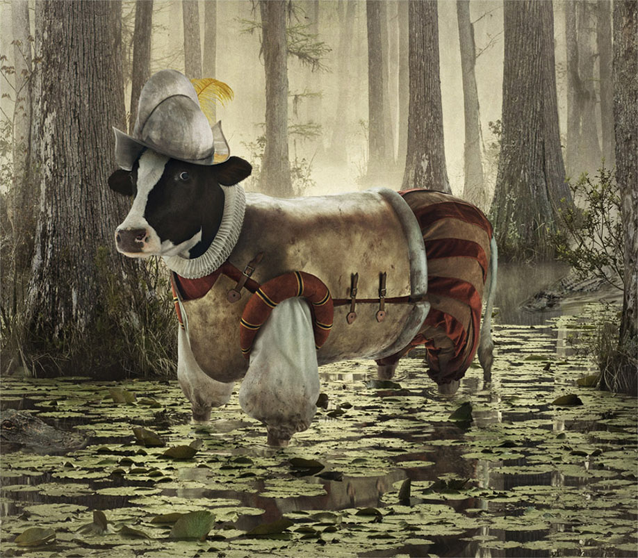cows 7 Отважные коровы