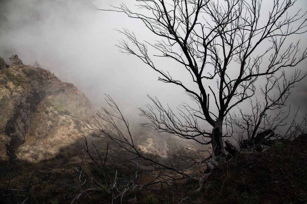 madeira 28 Мадейра, пик Арийэро