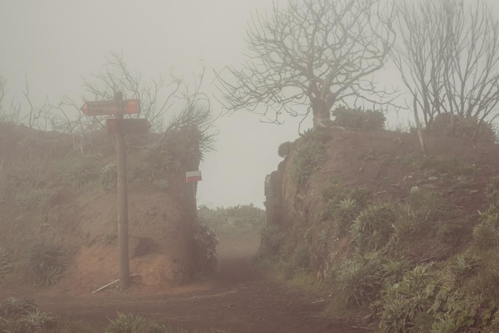 madeira 40 Мадейра, пик Арийэро