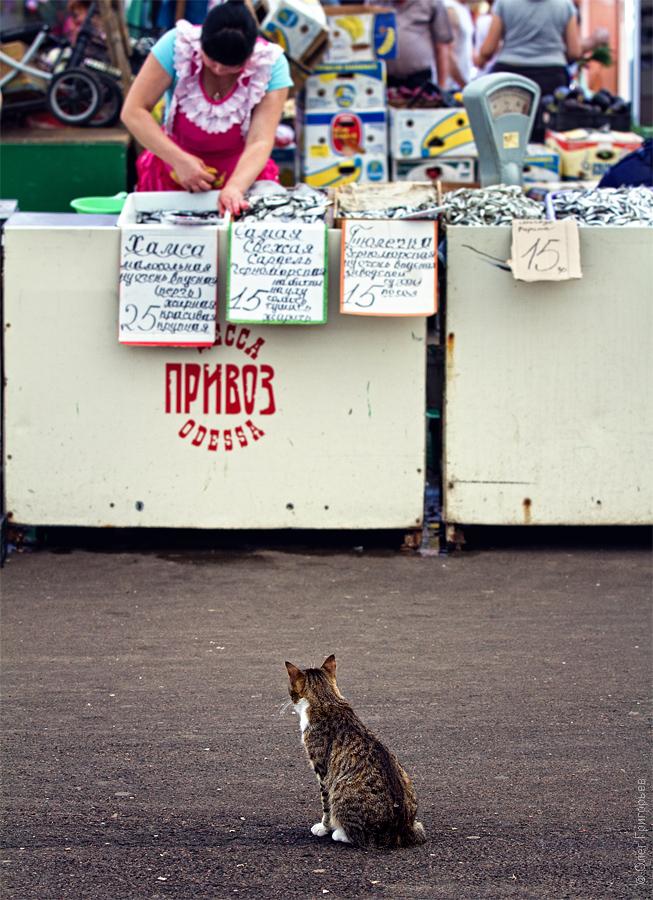 odessa privoz 12 Одесский рынок «Привоз»