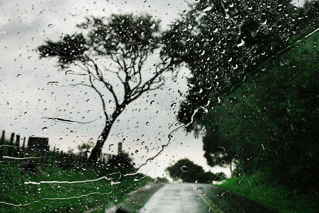 rain 12 Поэзия дождя в фотографиях Кристофера Жакро