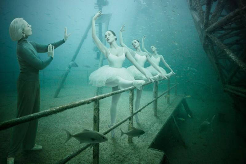 Подводная выставка фотографий, сделанных подводой