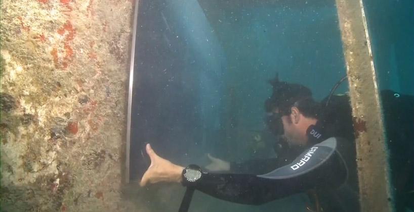 vandenberg14 Подводная выставка фотографий, сделанных под водой