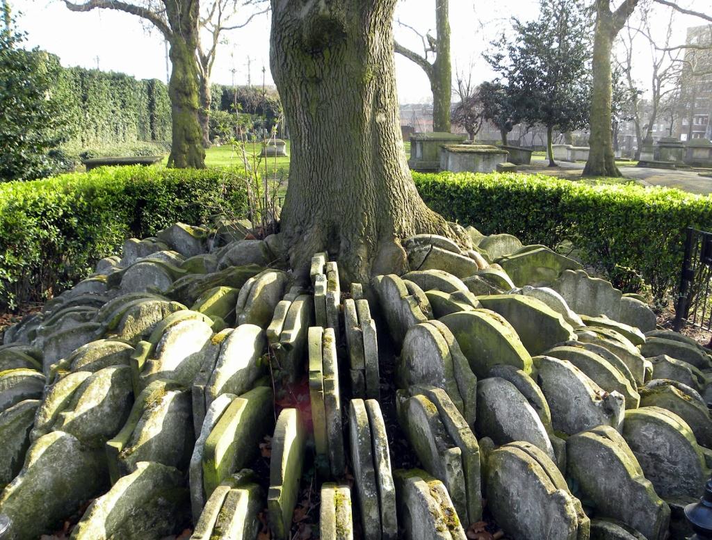 1107 Дерево сотни надгробий