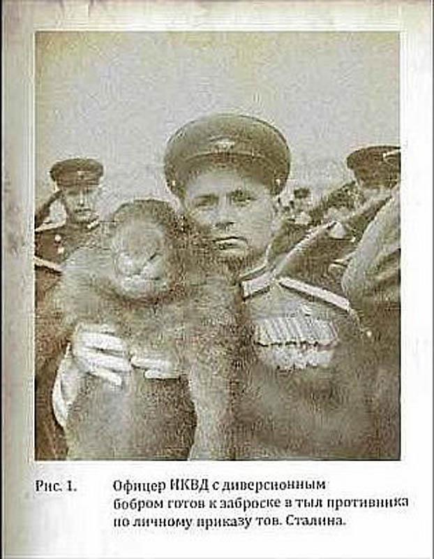 http://bigpicture.ru/wp-content/uploads/2012/08/11126.jpg