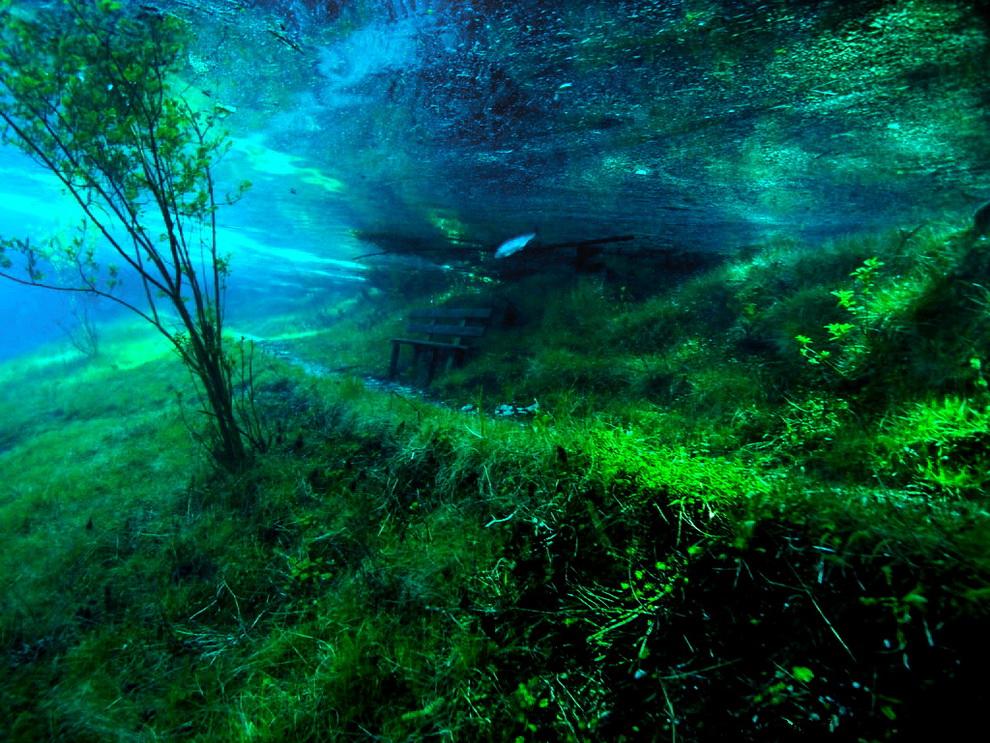 1139 Подводный парк «Зеленое озеро»