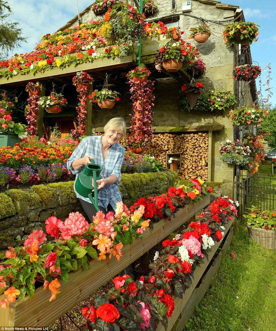 Цветочный рай картинки