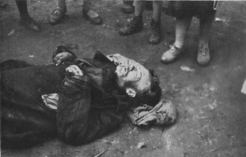 1296 1933 год: Харьков в дни Великого Голода