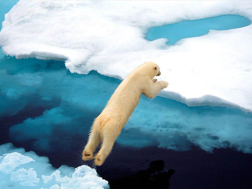 1551 21 фото от National Geographic