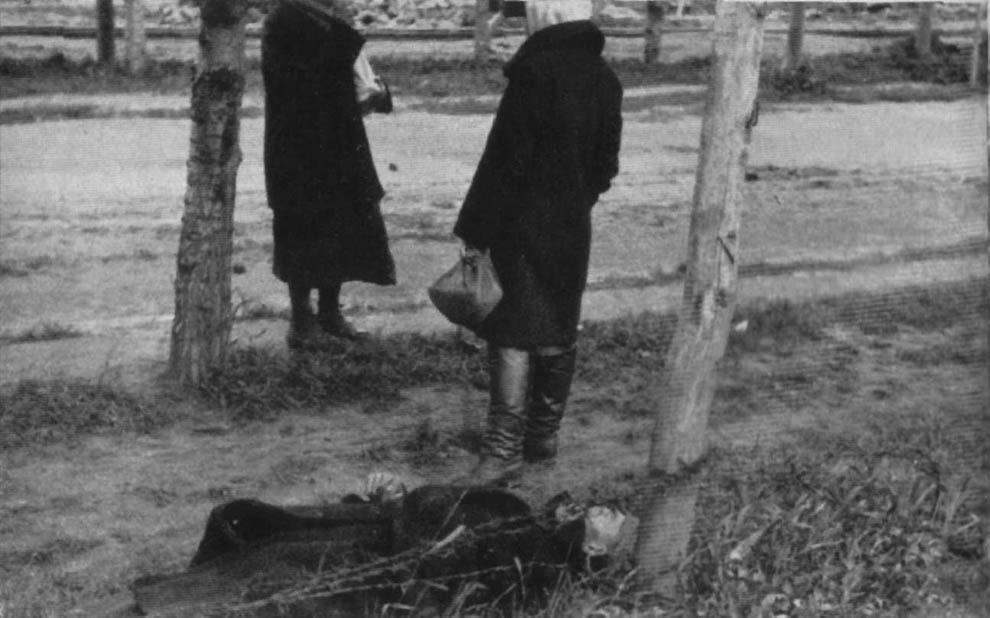 1665 1933 год: Харьков в дни Великого Голода