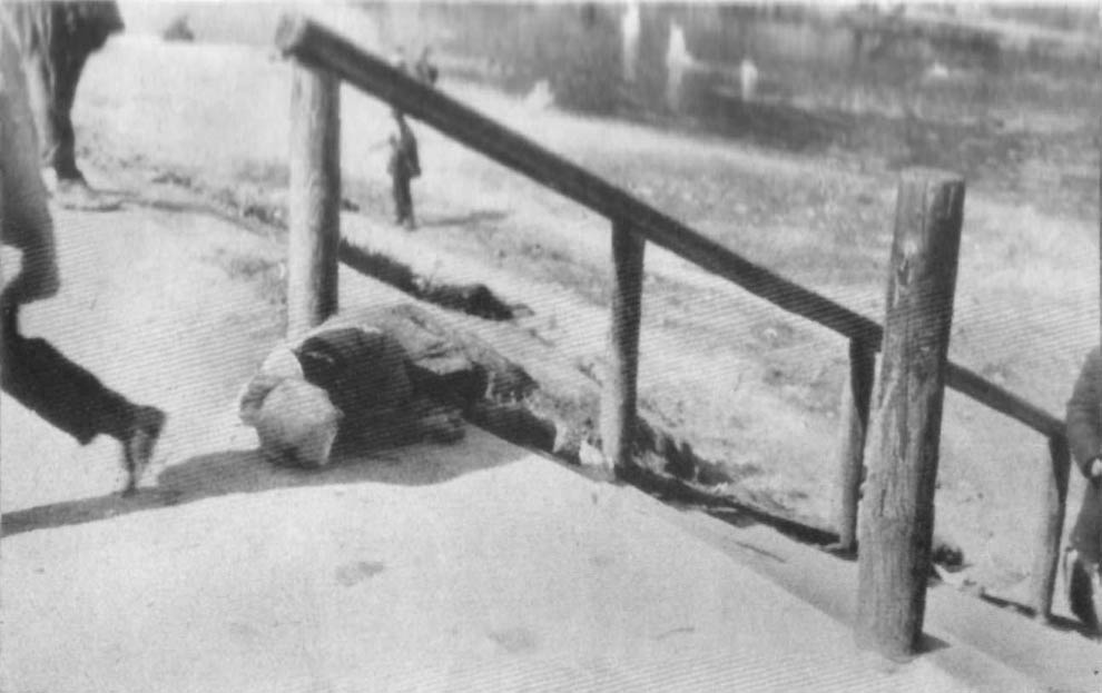 1761 1933 год: Харьков в дни Великого Голода