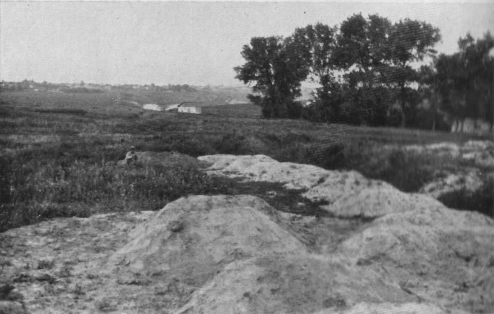 2049 1933 год: Харьков в дни Великого Голода