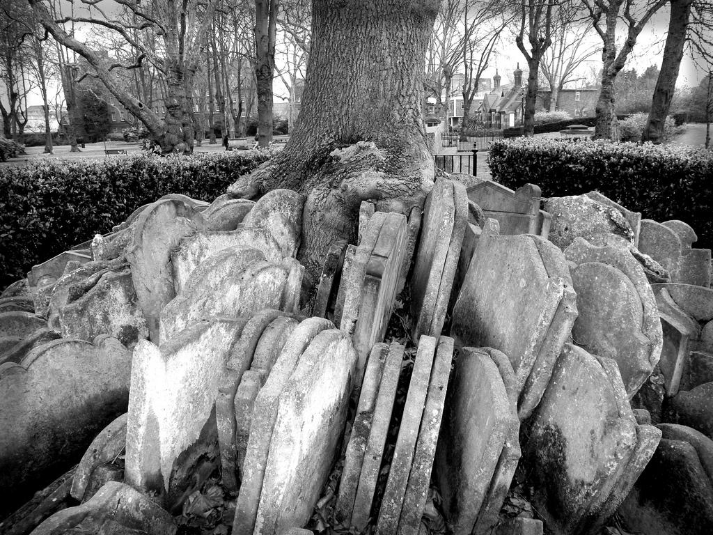 289 Дерево сотни надгробий