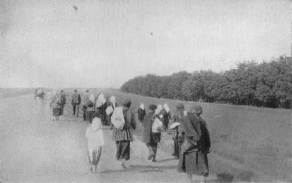 4135 1933 год: Харьков в дни Великого Голода