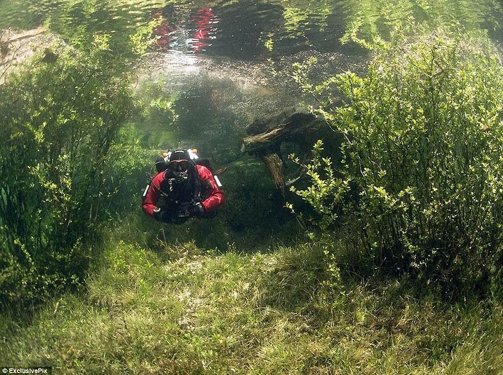 455 Подводный парк «Зеленое озеро»
