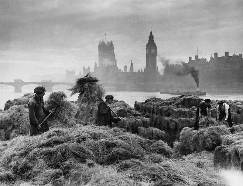 5119 Лондон: история в фотографиях