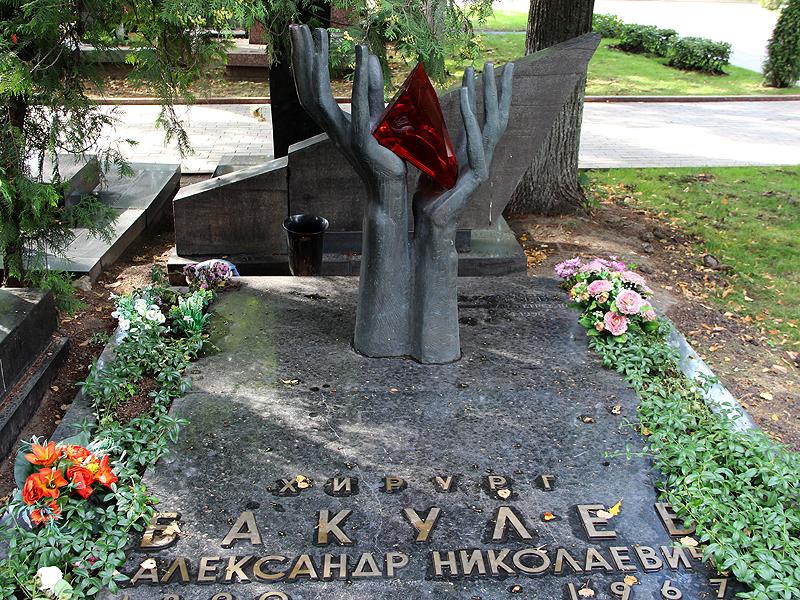 5212 Новодевичье кладбище   Покой великих