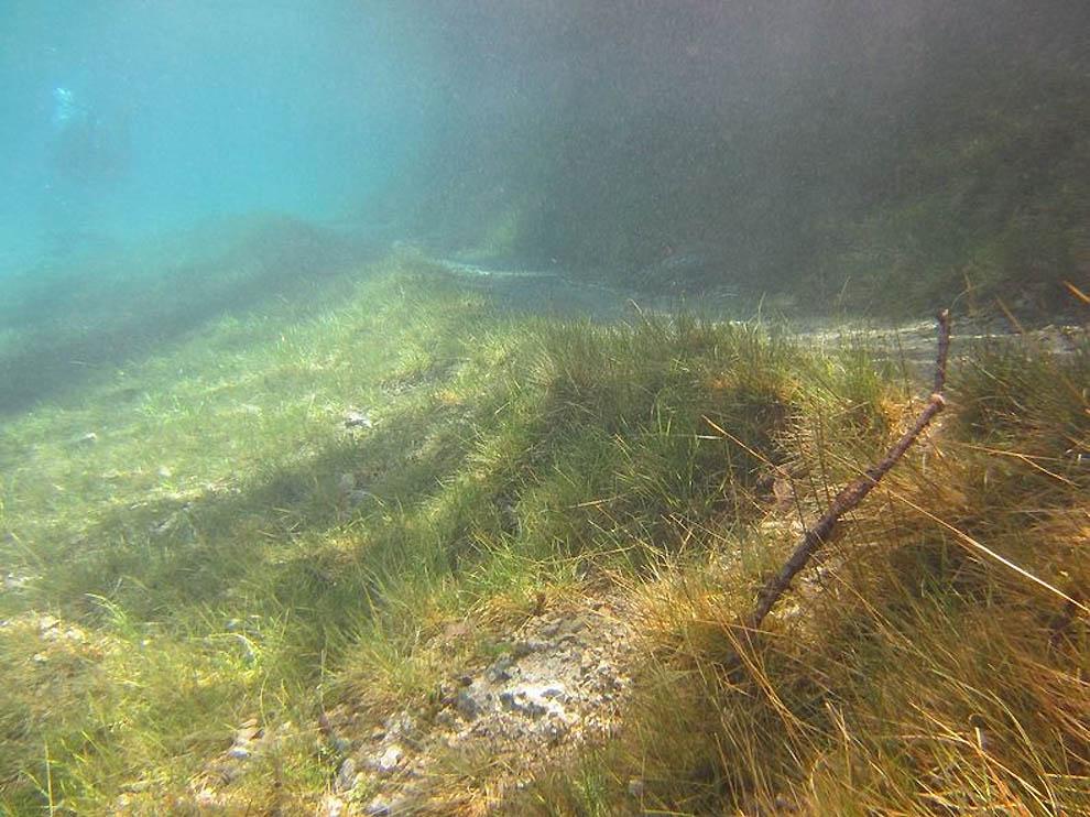 645 Подводный парк «Зеленое озеро»