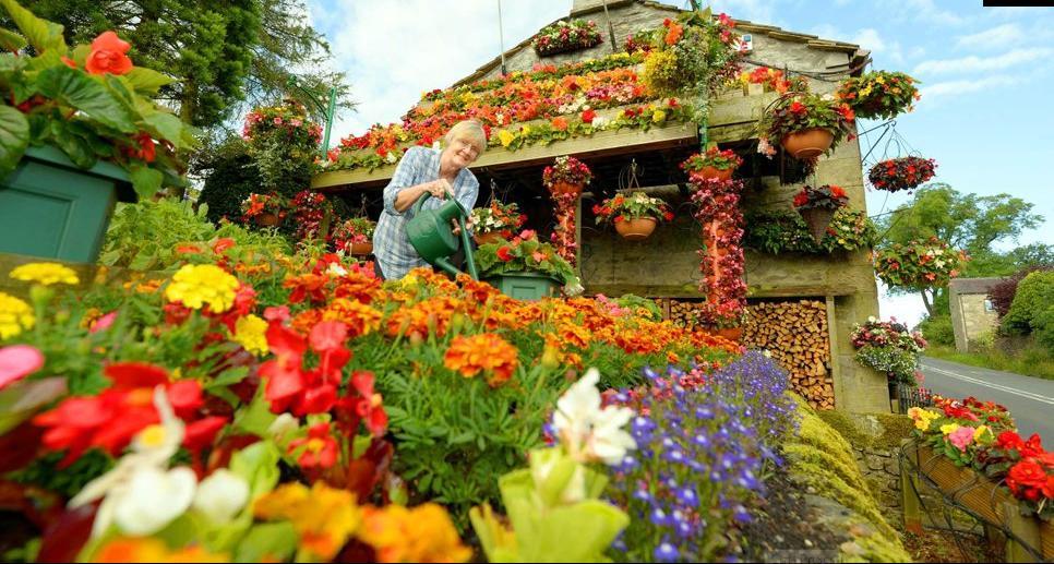 660 Цветочный дом