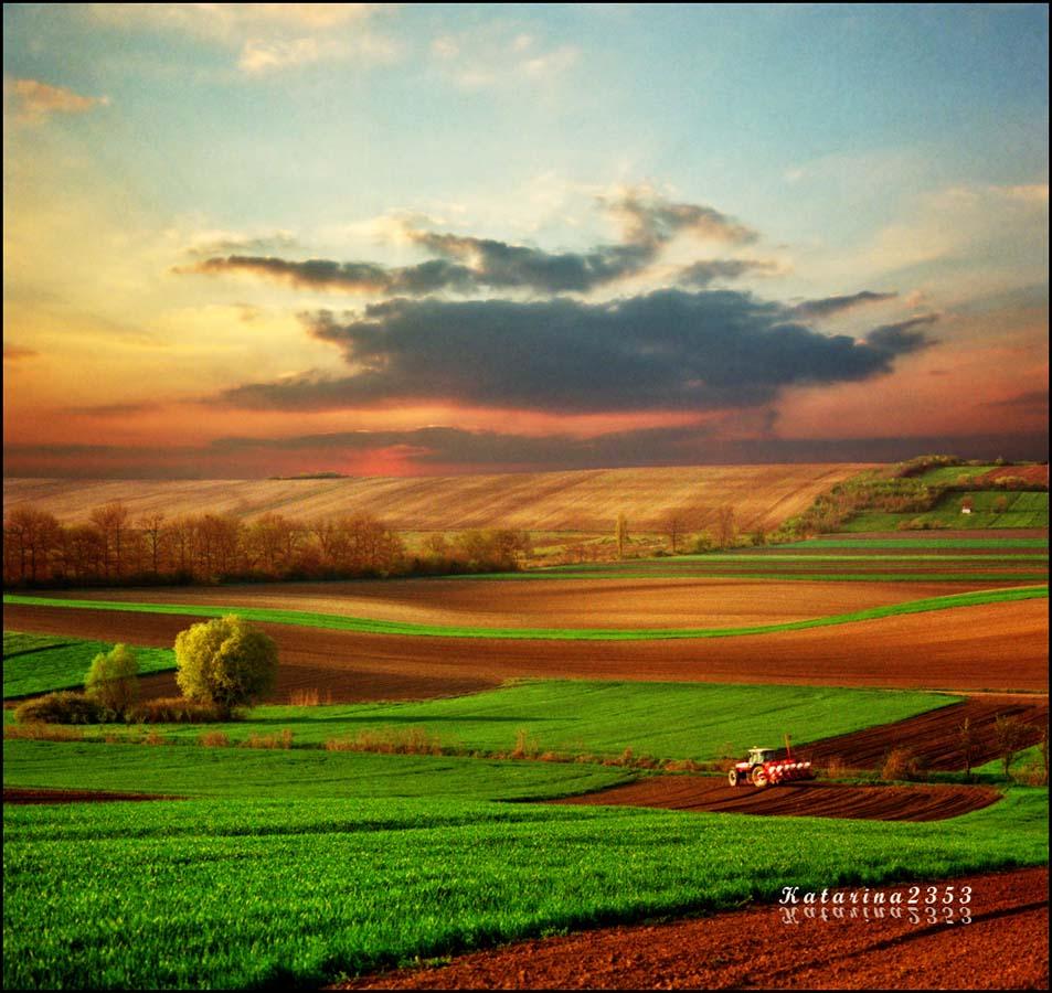 Dreamland 21 Пейзажи Катарины Стефанович