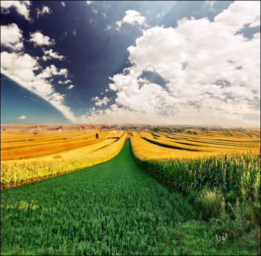 Dreamland 8 Пейзажи Катарины Стефанович