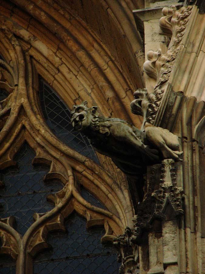 Gargoyles 13 Гаргульи в фотографиях
