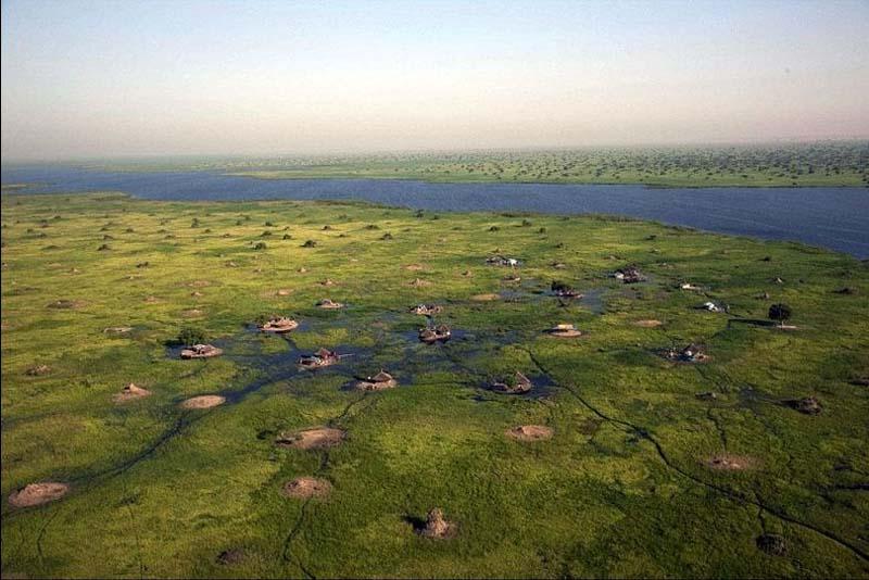 SouthSudan 7 Болота Судд в Южном Судане