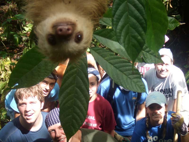 cute 7 Самые мимимишные зверушки из тех, что вы видели