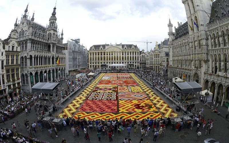 floralcarpet 1 800x499 Цветочный ковер в Брюсселе
