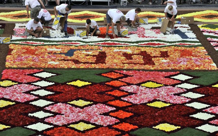 floralcarpet 14 Цветочный ковер в Брюсселе
