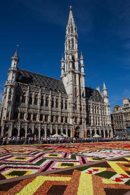 floralcarpet 15 Цветочный ковер в Брюсселе