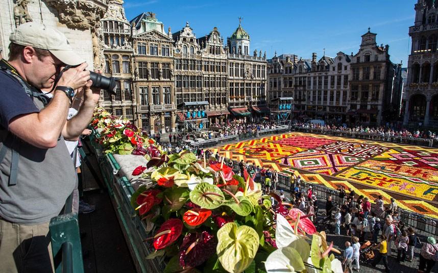 floralcarpet 16 Цветочный ковер в Брюсселе