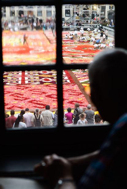 floralcarpet 17 Цветочный ковер в Брюсселе