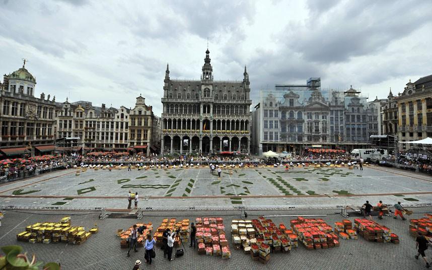 floralcarpet 3 Цветочный ковер в Брюсселе