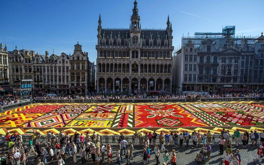 floralcarpet 4 Цветочный ковер в Брюсселе