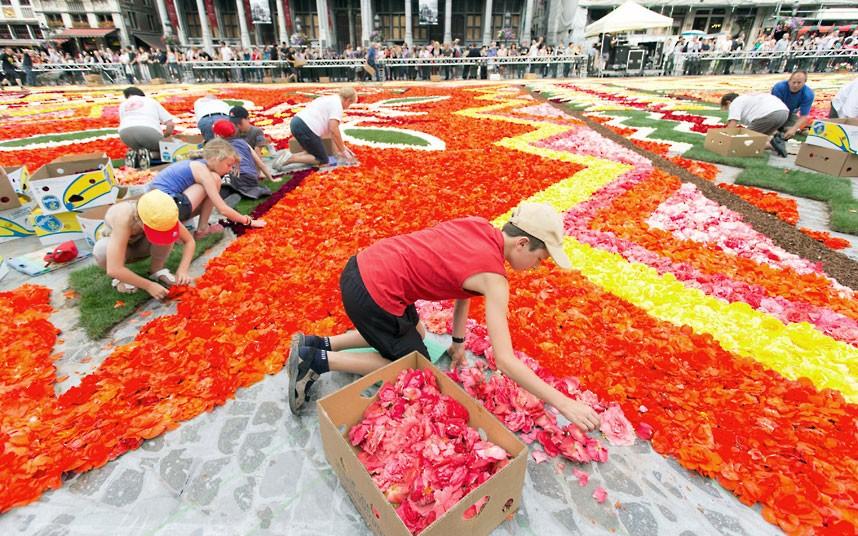 floralcarpet 6 Цветочный ковер в Брюсселе