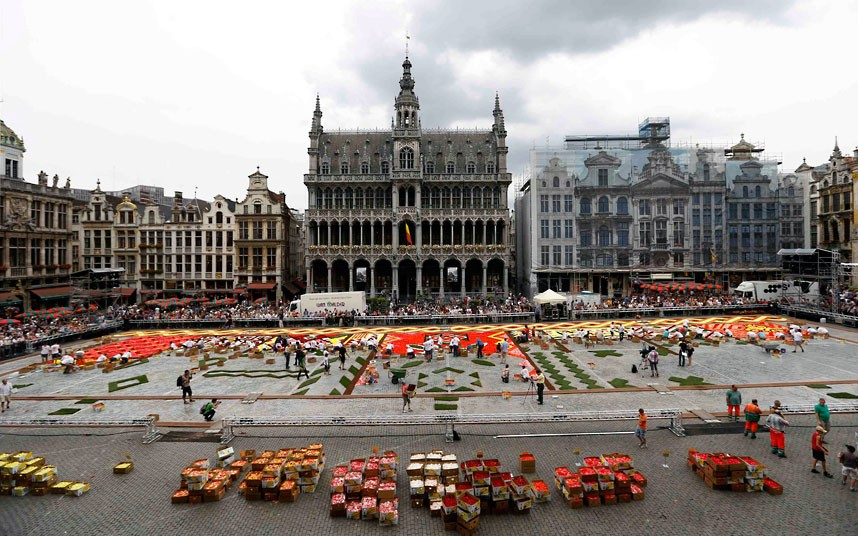 floralcarpet 8 Цветочный ковер в Брюсселе