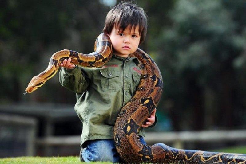 2‑летний рейнджер укрощает рептилий