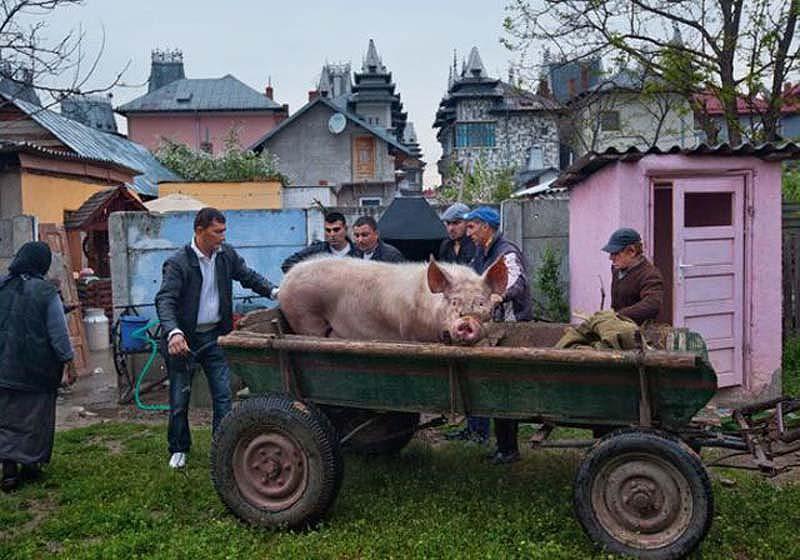 Byzesku 31 Бузеску – столица цыган миллионеров