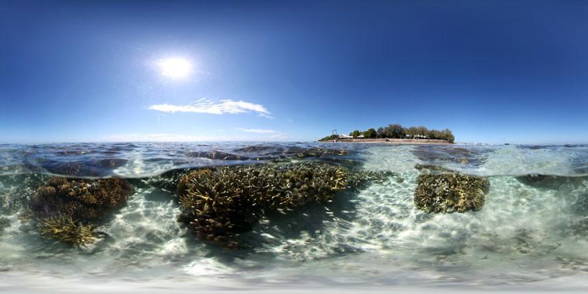 Explore coral reefs 15 Коралловые рифы в фотографиях