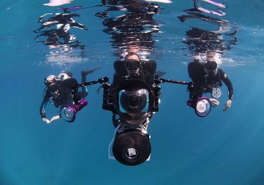 Explore coral reefs 17 Коралловые рифы в фотографиях