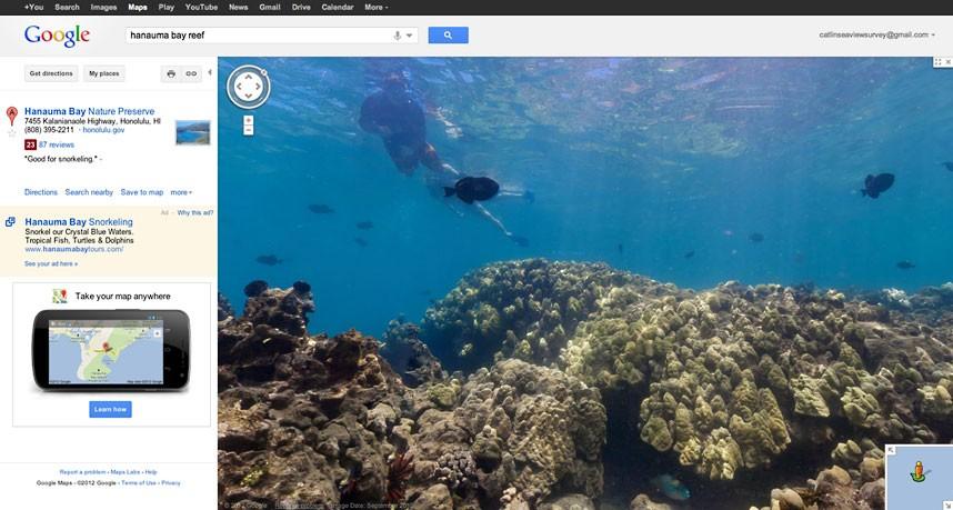 Explore coral reefs 27 Коралловые рифы в фотографиях