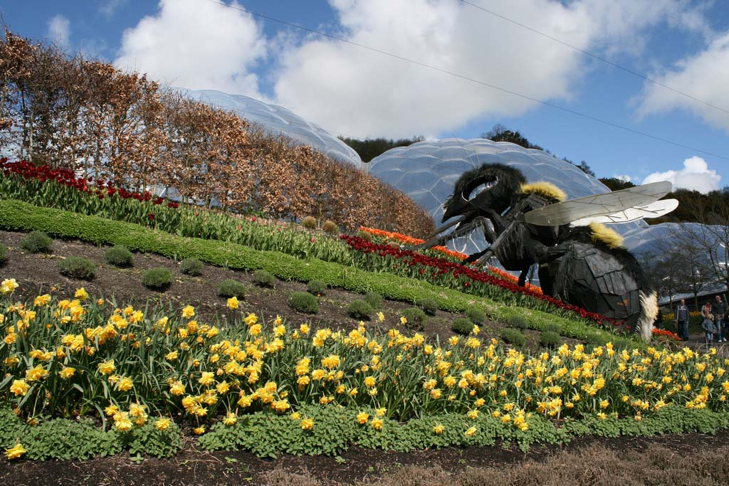 The Largest Greenhouse 12 Самая большая теплица в мире