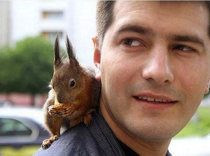 The-squaddie-and-the-squirrel-2.jpg
