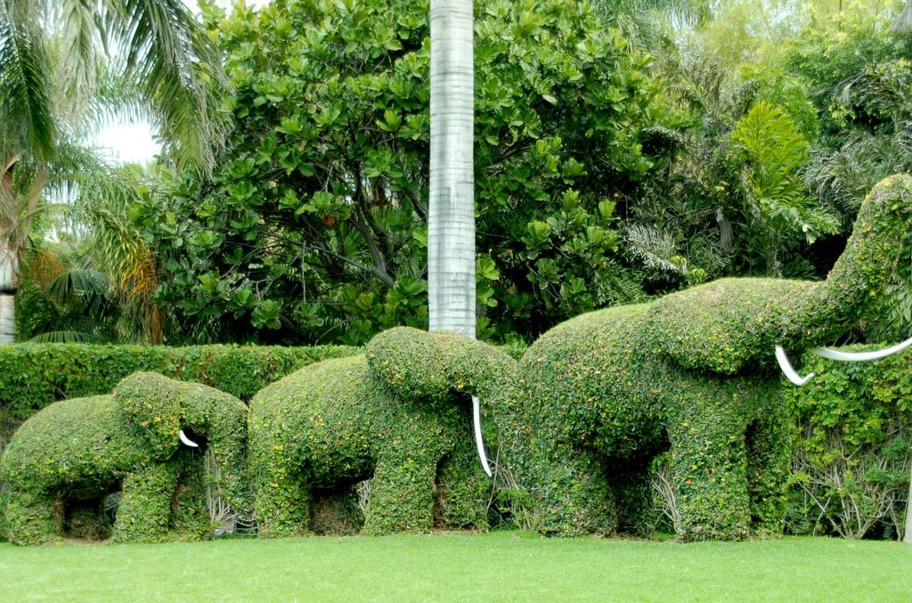 Topiary03 Топиари   зеленое искусство