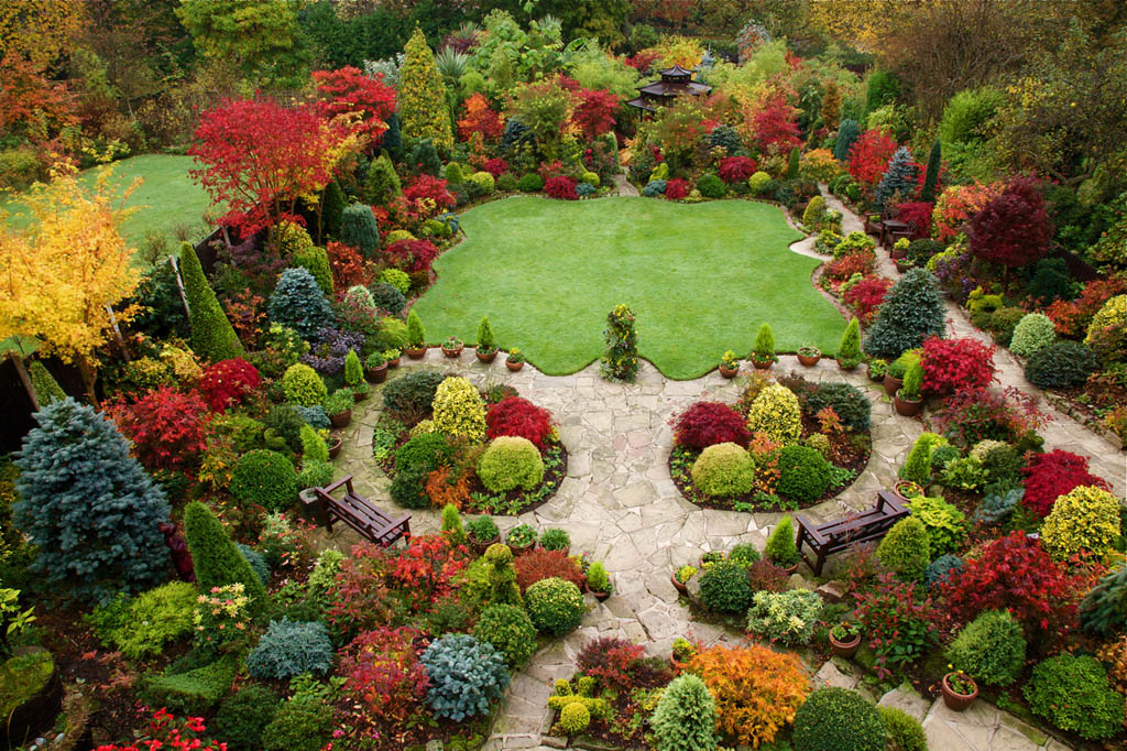Topiary08 Топиари   зеленое искусство