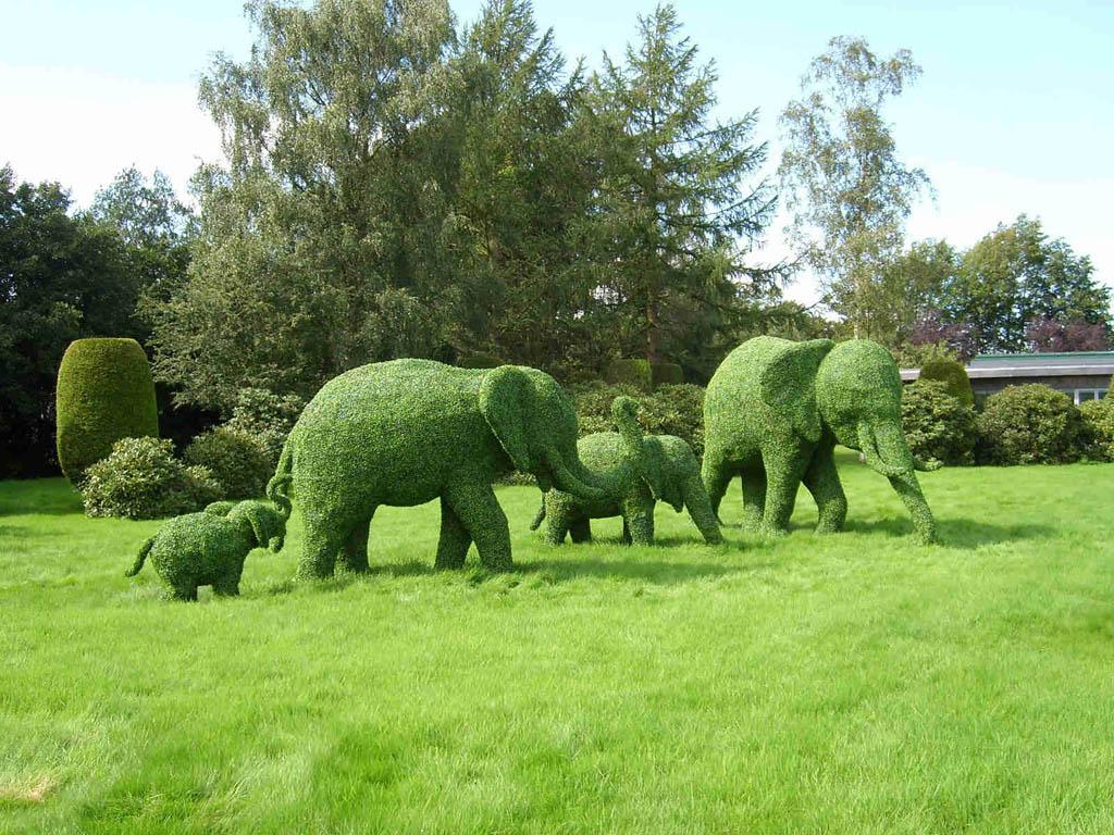 Topiary12 Топиари   зеленое искусство