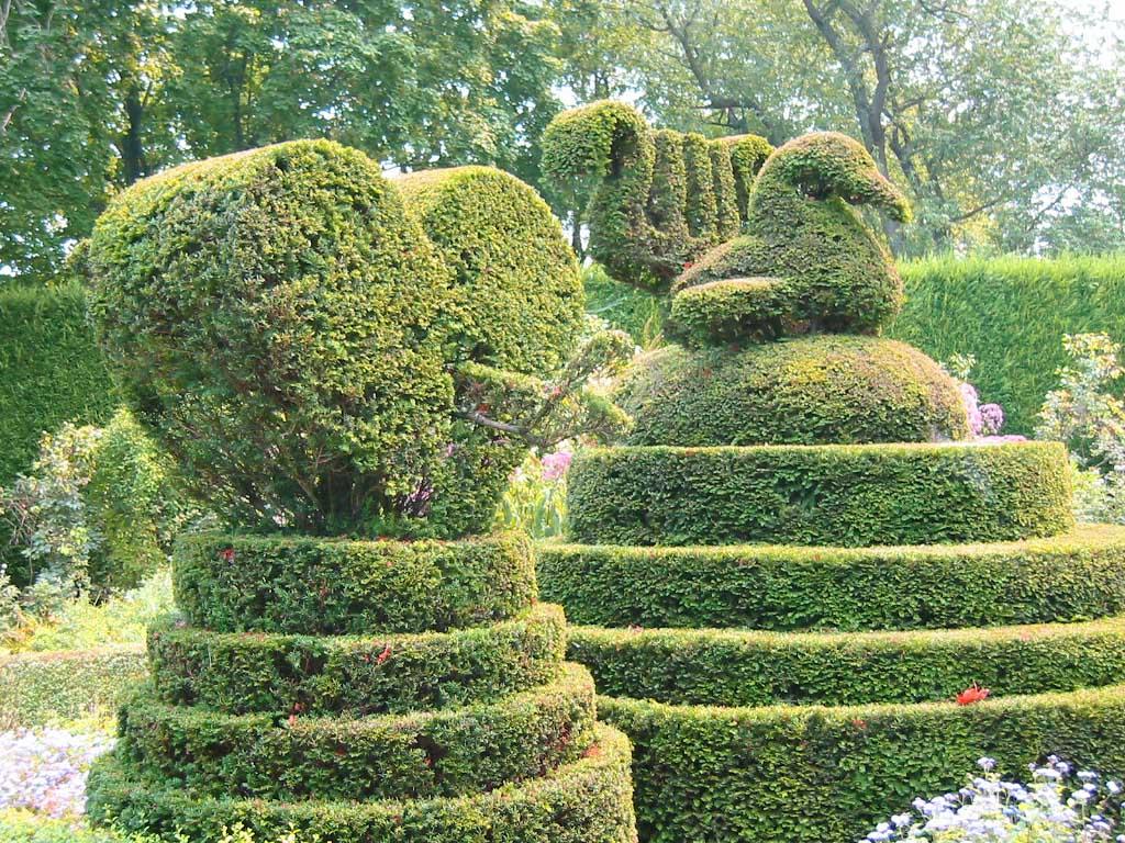 Topiary19 Топиари   зеленое искусство