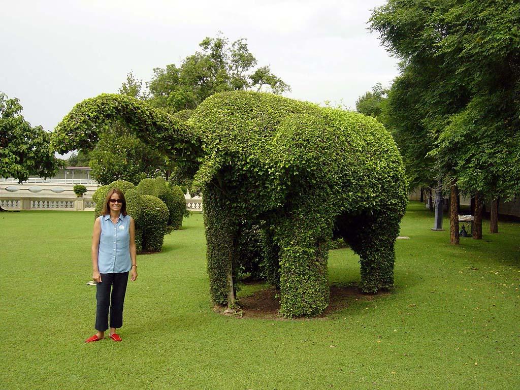 Topiary20 Топиари   зеленое искусство