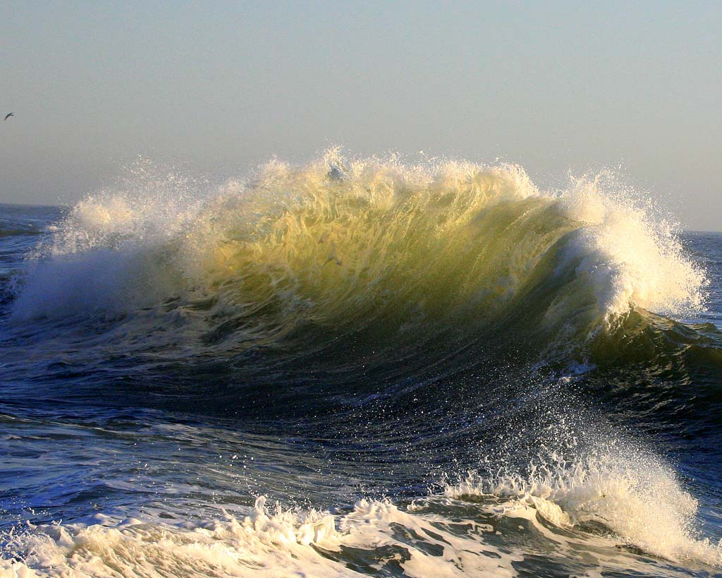Waves by Bill Dalton 10 Красота волн